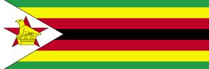 Report: Zimbabwe Mission (June 2010)