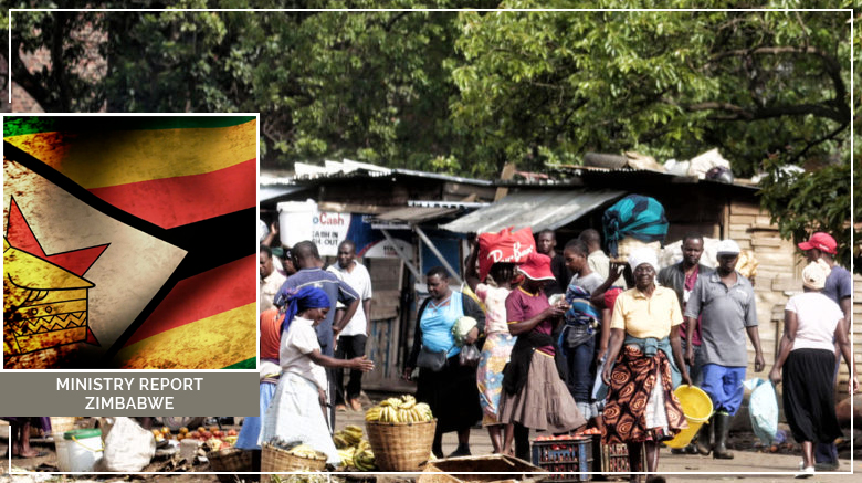 Ministry Report: Zimbabwe Mission (June 2010)